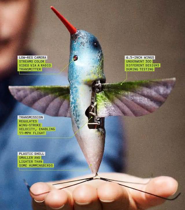 Nano Hummingbird, beija flor, controle remoto, espião, espionagem, câmera espiã, voador, fun, game, design, inovação 3