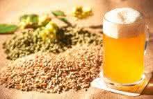 grow-your-own-beer-garden, o-jardim-de-cerveja, lupulo-trigo-cevada, como-fazer-cerveja-em-casa, por-que-nao-pensei-nisso 4