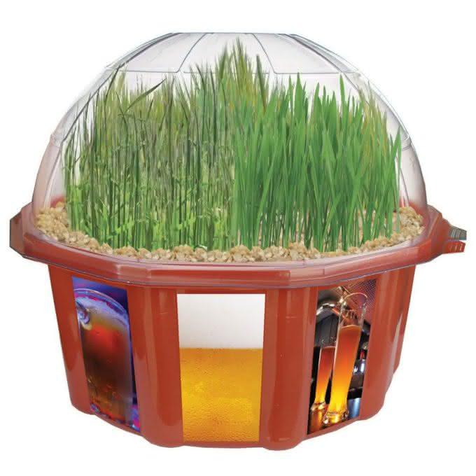 grow-your-own-beer-garden, o-jardim-de-cerveja, lupulo-trigo-cevada, como-fazer-cerveja-em-casa, por-que-nao-pensei-nisso