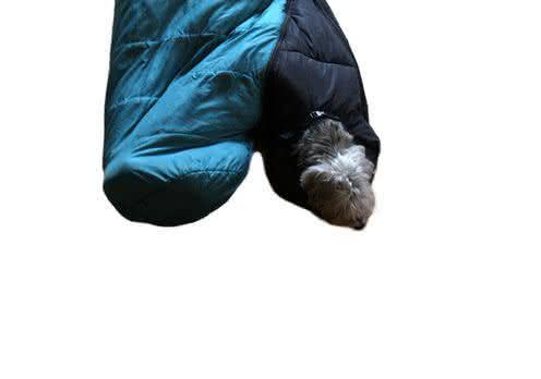 BarkerBag-Dog-Sleeping-Bag, saco-de-dormir-para-cachorro, quanto-custa-saco-de-dormir, acampamento-sleeping-bag, acampar-saco-de-dormir, por-que-nao-pensei-nisso 32