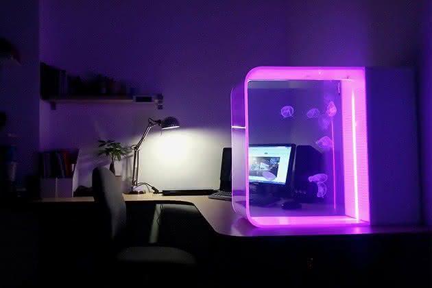 Cubic-Pulse-80-Jellyfish-Aquarium, aquario-de-agua-viva, aquario-inovador, aquario-diferente, quanto-custa-aquario, por-que-nao-pensei-nisso 2