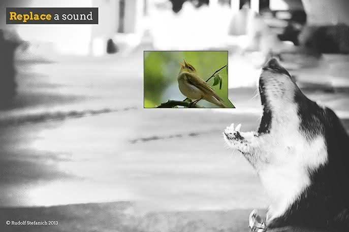 sono, Noise-cancelling-on-your-window, anula-ruidos, anti-ruido, acaba-com-ruido, sons, som-externo, janela, gadget, sono-barulho, barulho, Rudolf- Stefanic, por-que-nao-pensei-nisso 3