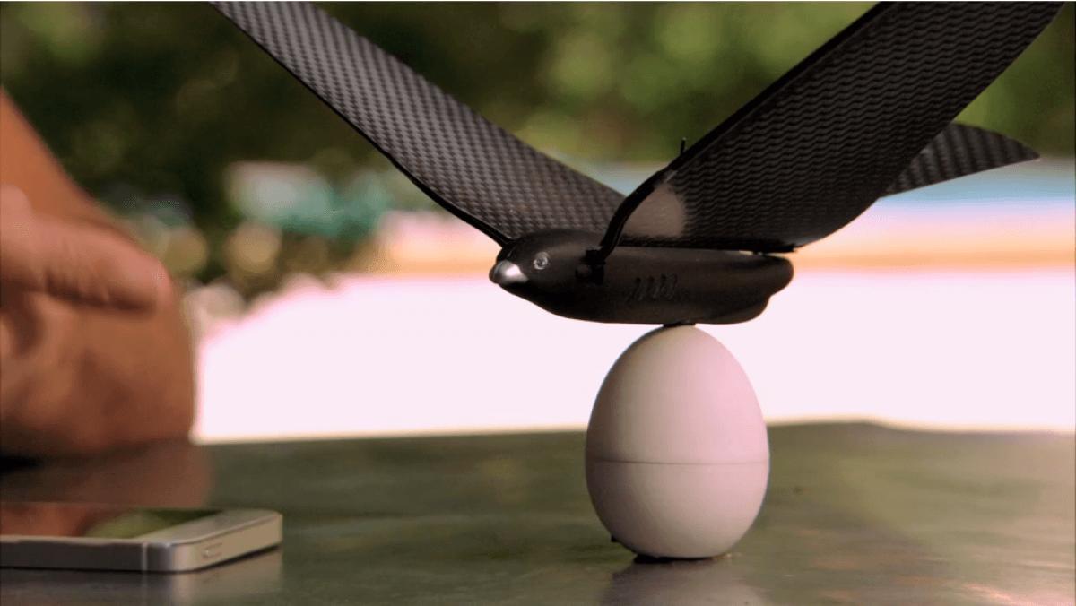 Bionic-Bird-Smartphone-Controlled-Robotic-Bird, passaro-controle-remoto, passaro-bionico, controle-remoto, quanto-custa-controle-remoto, por-que-nao-pensei-nisso 56
