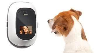 petchatz, interfone-cachorro, fale-com-cachorro, telefone-cachorro, falar-pet, produto-pet, video-pet, por-que-nao-pensei-nisso