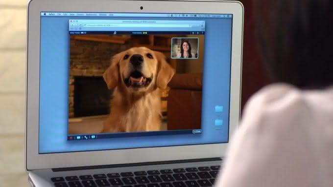 petchatz, interfone-cachorro, fale-com-cachorro, telefone-cachorro, falar-pet, produto-pet, video-pet, por-que-nao-pensei-nisso 5