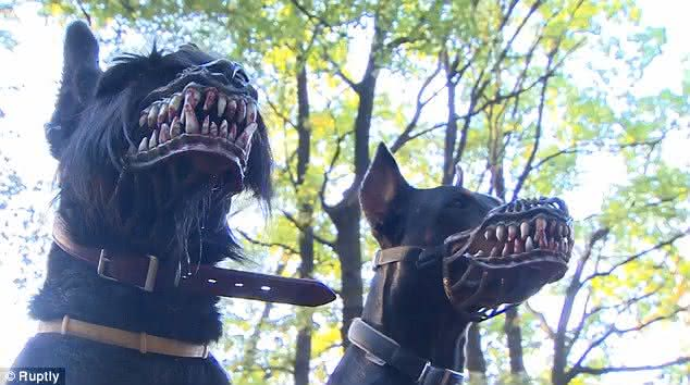 russian-werewolf-dog-muzzle, focinheira-cachorro, focinheira lobisomem, halloween, produtos-halloween, por-que-nao-pensei-nisso, pnpn 5